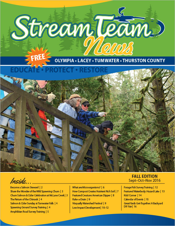 Thurston County Stream Team Newsletter Washington