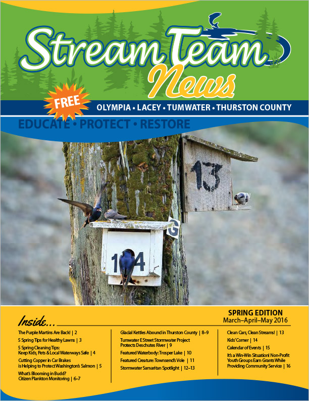 Thurston County Stream Team Newsletter Spring 2016 Olympia, WA