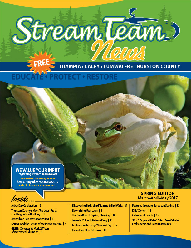 Thurston County Stream Team Newsletter Spring 2017 Olympia, WA